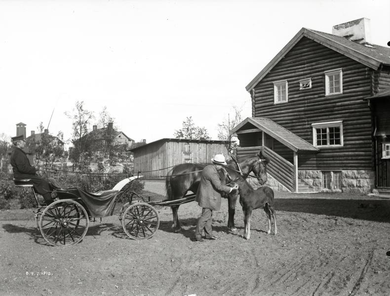 Hjalmar Lundbohm med väntande kusk på schäs och förspänd häst med föl. Den 4 juli 1910.