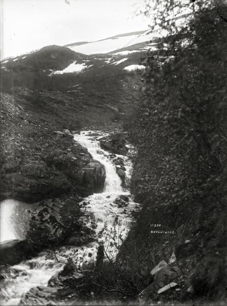 Nuoljajokk.1904